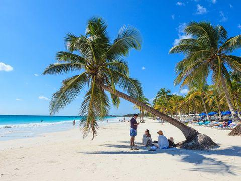 The Beach In Tulum Mexico