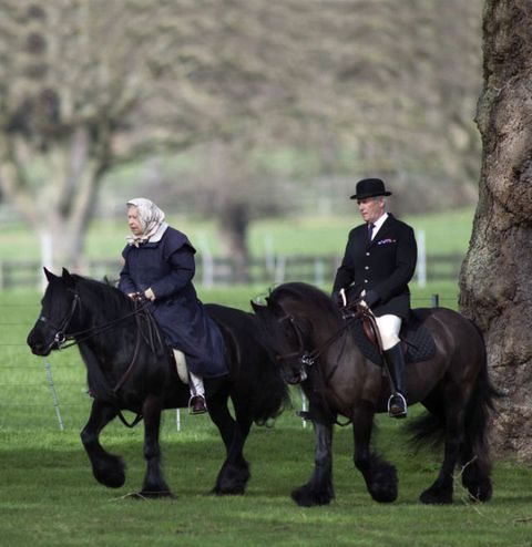 queen elizabeth II riding horse