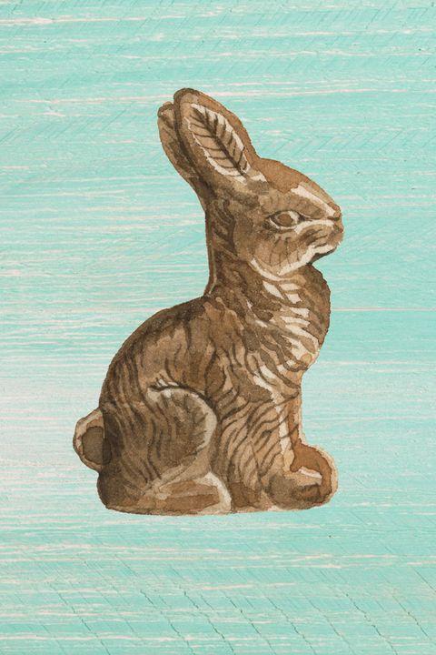 Hare, Rabbits and Hares, Rabbit, Art, Illustration,