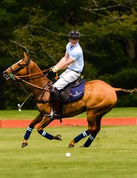 """""""I'm hoping for a soft pitch so when I fall off my horse I won't hurt my head,"""" Prince Harry confessed to Town & Country Editor in Chief Jay Fielden. Nevertheless, he nobly took the field with the Sentebale Land Rover team he captained this Tuesday at the Greenwich Polo Club, on the final day of his visit to the United States. And the Prince, a second lieutenant in the British Army and third in line for the British throne, showed no signs of rust, scoring the final and decisive goal for his Blues against a St Regis Hotel team led by the Argentinean polo professional Nacho Figeuras.The four-chukker exhibition polo match, sponsored by Royal Salute, Land Rover, the St. Regis Hotel group and Town & Country, raised more than a million dollars for the Sentebale charity that Prince Harry founded with Prince Seeiso of Lesotho. The event drew a glittering crowd eager to support the Princes and their cause (all proceeds from the event go to support the neediest children of Lesotho). Stephanie Seymour, the wife of Peter Brant, who owns the Greenwich Polo Club that hosted the event, sat to the right of Prince Harry at a lunch preceding the four-chukker match. The model Karolina Kurkova filled the empty seat on the Prince's other side."""