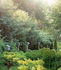 """The couple initially installed one of these quaint shelters to attract bluebirds, only to see it occupied by swallows. So they tried another...and another...and wound up with an unintended benefit: The line of roosts provides the suggestion of a garden wall. """"Sculpturally, the birdhouses look great,"""" says Joyce, """"and they create continuity."""""""