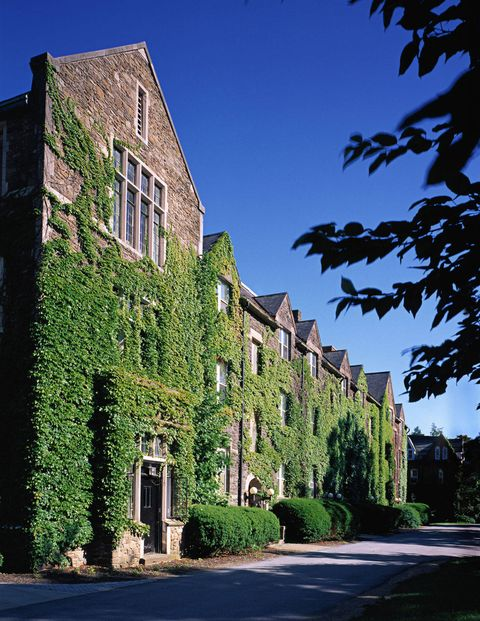 The ivy-lined Stone Row houses several residence halls.