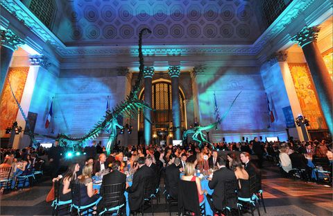 "On April 18th, the Museum of Natural History hosted their Annual Museum Dance—always a wild affair! Dinner was served in the shadows of the dinosaurs and guests danced under the blue whale in the Hall of Ocean Life; an allied exhibition that takes advantage of the celebrity status of the museum's 94-foot-long female blue whale will be on display throughout the spring and is called ""Whales: Giant of the Deep."""