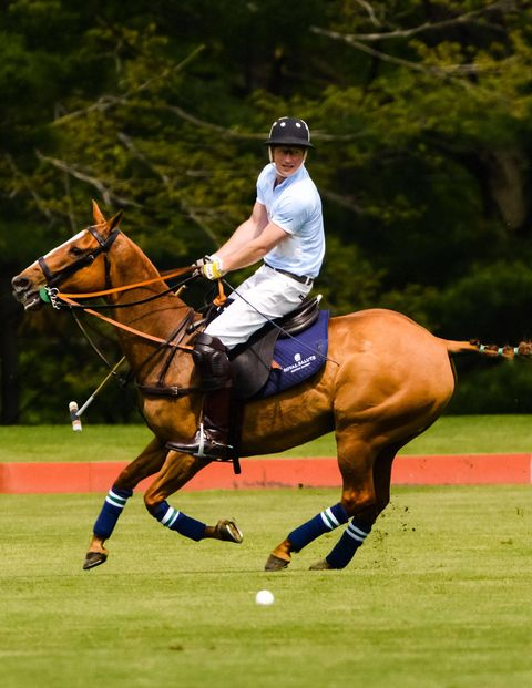 """I'm hoping for a soft pitch so when I fall off my horse I won't hurt my head,"" Prince Harry confessed to Town & Country Editor in Chief Jay Fielden. Nevertheless, he nobly took the field with the Sentebale Land Rover team he captained this Tuesday at the Greenwich Polo Club, on the final day of his visit to the United States. And the Prince, a second lieutenant in the British Army and third in line for the British throne, showed no signs of rust, scoring the final and decisive goal for his Blues against a St Regis Hotel team led by the Argentinean polo professional Nacho Figeuras.The four-chukker exhibition polo match, sponsored by Royal Salute, Land Rover, the St. Regis Hotel group and Town & Country, raised more than a million dollars for the Sentebale charity that Prince Harry founded with Prince Seeiso of Lesotho. The event drew a glittering crowd eager to support the Princes and their cause (all proceeds from the event go to support the neediest children of Lesotho). Stephanie Seymour, the wife of Peter Brant, who owns the Greenwich Polo Club that hosted the event, sat to the right of Prince Harry at a lunch preceding the four-chukker match. The model Karolina Kurkova filled the empty seat on the Prince's other side."