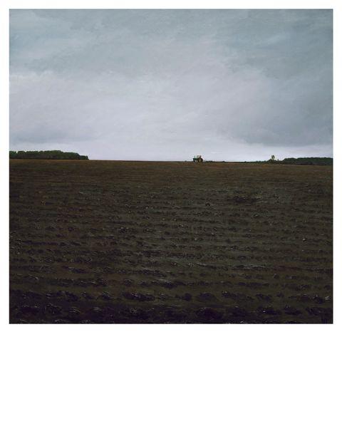 Vegetation, Landscape, Atmosphere, Plain, Soil, Land lot, Horizon, Ecoregion, Terrain, Grassland,