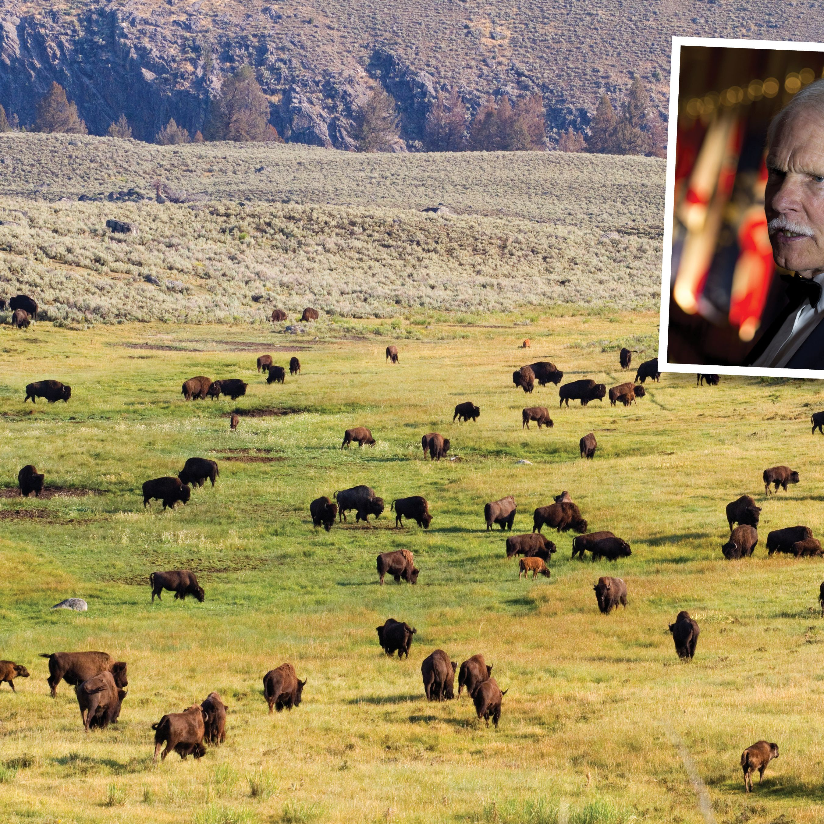 Ted Turner owns land in New Mexico, Colorado, Montana, South Dakota, Nebraska, and Kansas, and much of it is home to his bison herd, which, at 55,000 head, accounts for more than 10% of all the bison on earth.Acreage, in Rhode Islands: 2.02