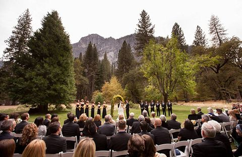 Hair, Mammal, Crowd, Formal wear, Suit, Chair, Audience, Evergreen, Ceremony, Larch,