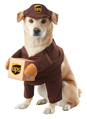 UPS Delivery Man Dog Costume