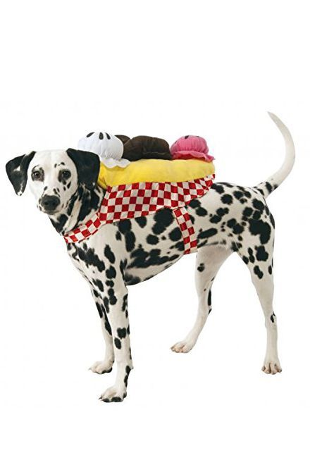 35 Funny Dog And Puppy Costumes For 2019 Cute Pet Halloween