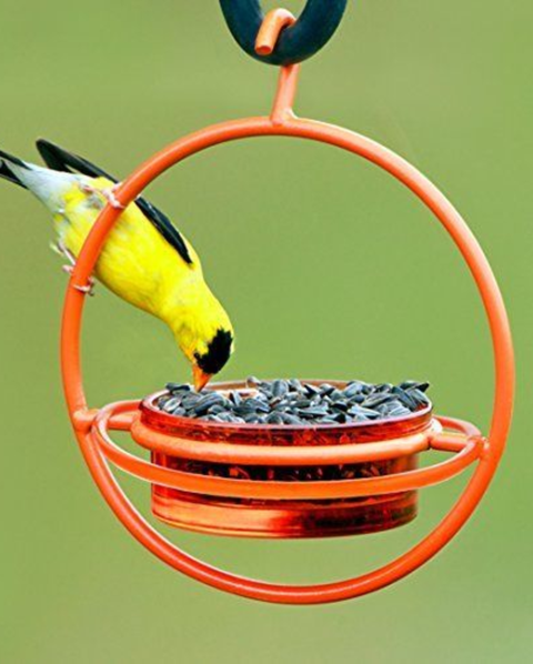 11 Unique Bird Feeders Stylish Bird Feeders For Your Backyard