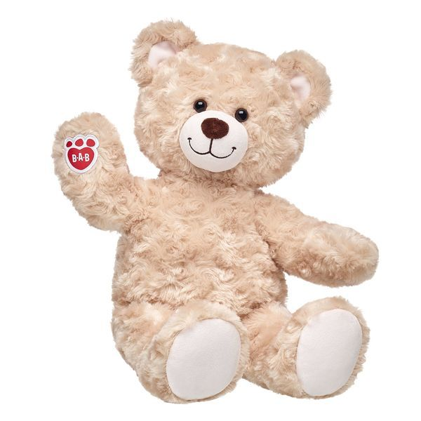 Teddys Build a bear