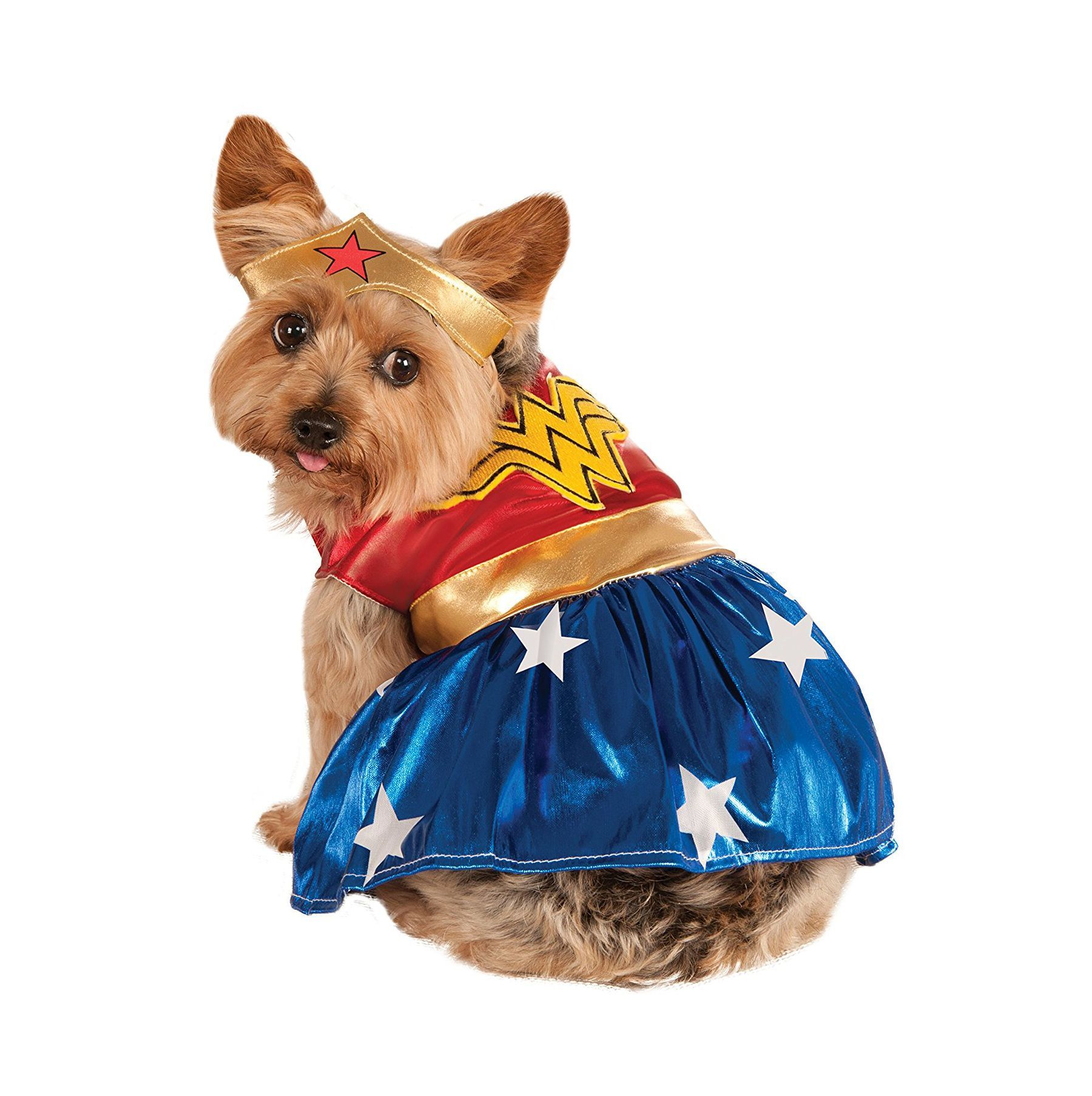 35 funny dog halloween costumes - cute ideas for pet costumes