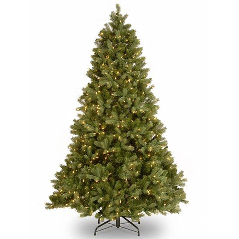 6 national tree 75 foot downswept douglas tree with clear lights