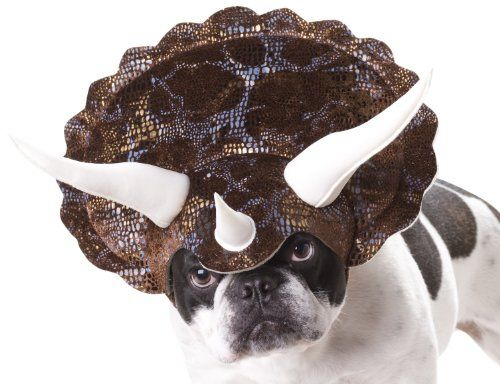 10 funny dog halloween costumes in 2018 best pet costume ideas
