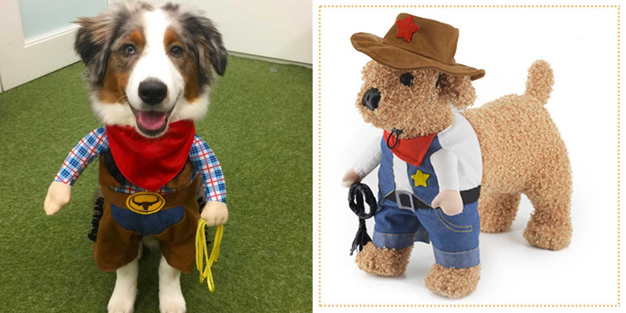 35 best dog costumes for halloween 2018 cute halloween costumes for dogs