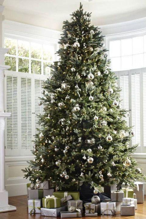 balsam hill - Silvertip Fir Christmas Tree