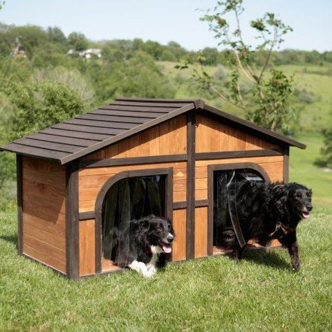 1 Of 15 Parioned Dog House