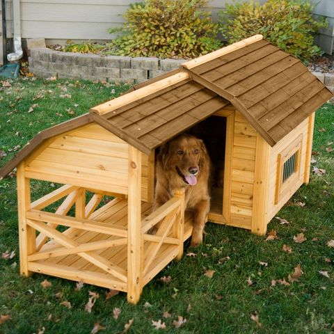 15 Best Fancy Dog Houses - Cool Luxury Dog Houses To Buy Raised Dog House Floor Plans on bungalow house plans, raised garage plans, raised cottage house plans, raised house plans charleston sc, raised house landscaping, raised beach house plans, contemporary house plans, raised house plans southern, u-shaped house plans, raised house foundations, raised deck plans, elevated house plans, raised house construction, raised floor tile, ranch house plans, turkey house plans, raised small house plans, raised river home plans, raised cabin plans, raised ranch addition plans,