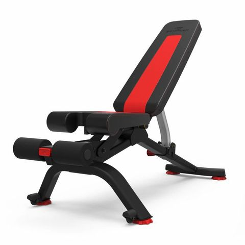Surprising 12 Best Home Gym Weight Benches For 2019 Adjustable Gym Bench Dailytribune Chair Design For Home Dailytribuneorg