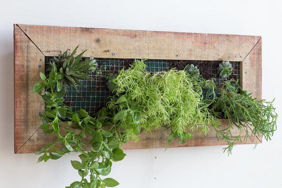 Wooden Wall Mounted Planter Box