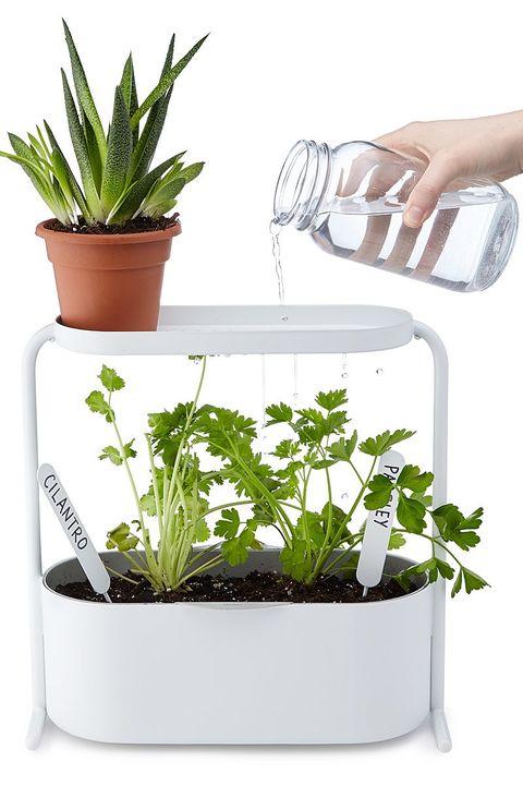 12 Indoor Herb Garden Ideas - Kitchen Herb Planters We Love
