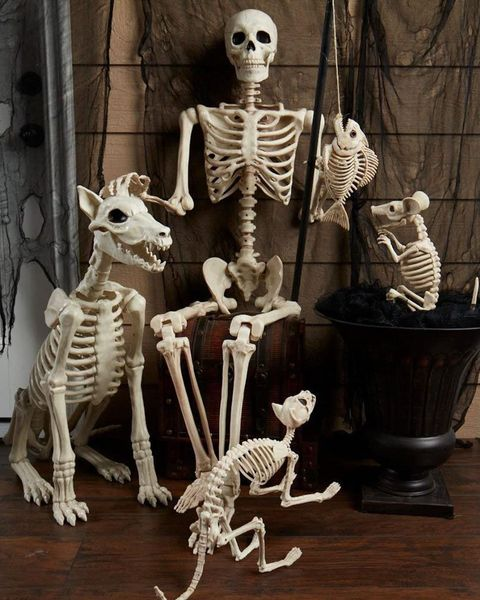 Walmart Decorations For Living Room: Walmart Halloween Decorations 2018