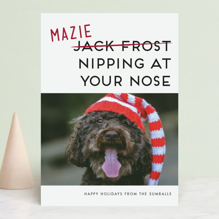 25 Funny Christmas Card Ideas - Humorous Holiday Cards 2018