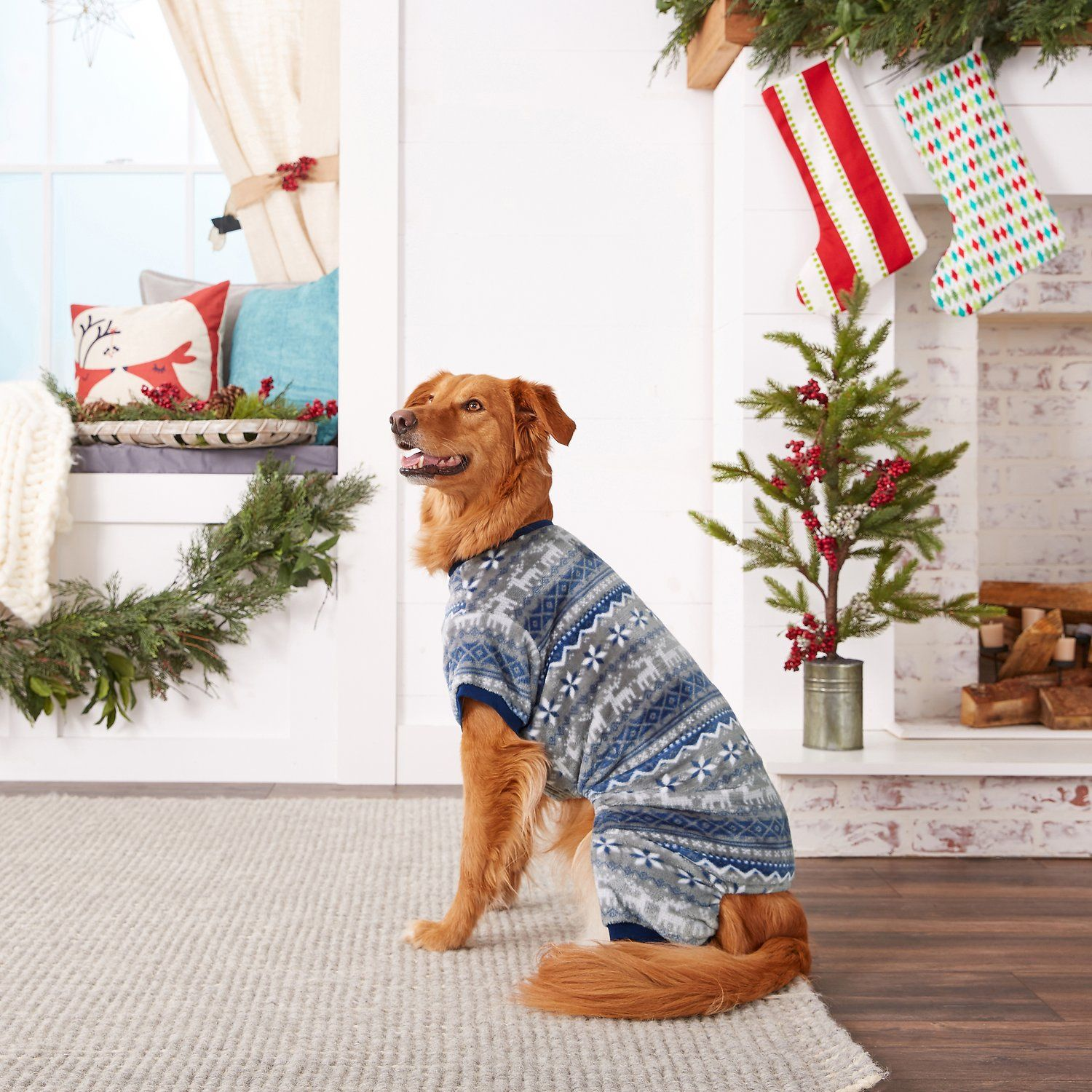 50 Best Gifts for Dog Lovers 2018 - Unique Dog Owner Gift Ideas