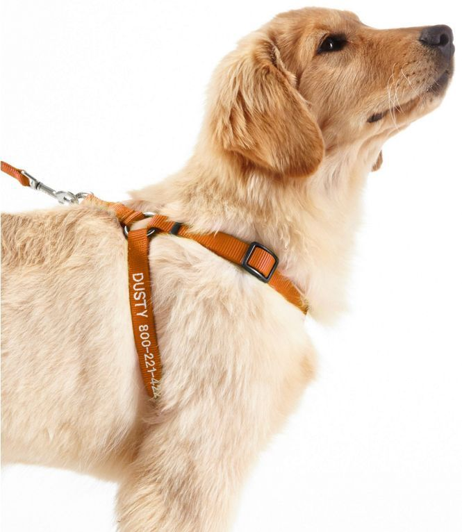 237b373ac9211 Personalized Pet Harness