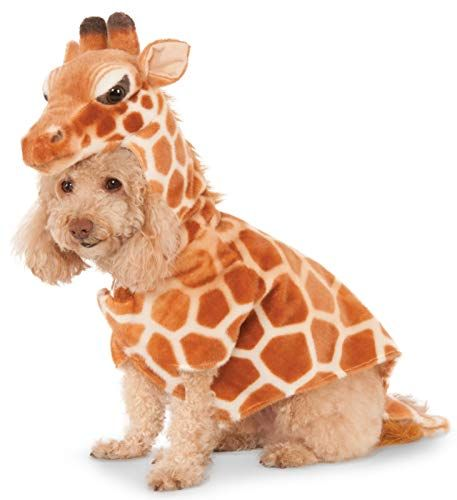 dog in giraffe costume