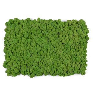 These Moss Tiles Are The Coolest Way To Bring The Outdoors