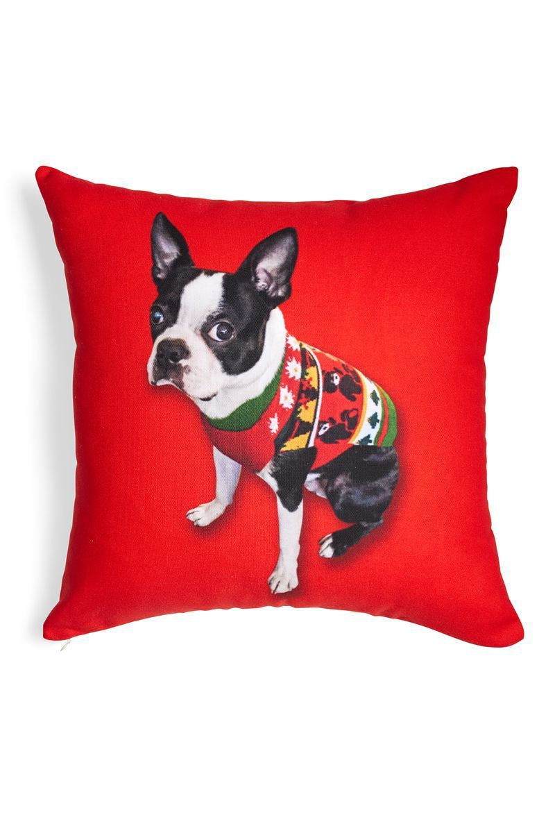 42 Best Dog and Cat Gifts - Best Christmas Pet Gift Ideas