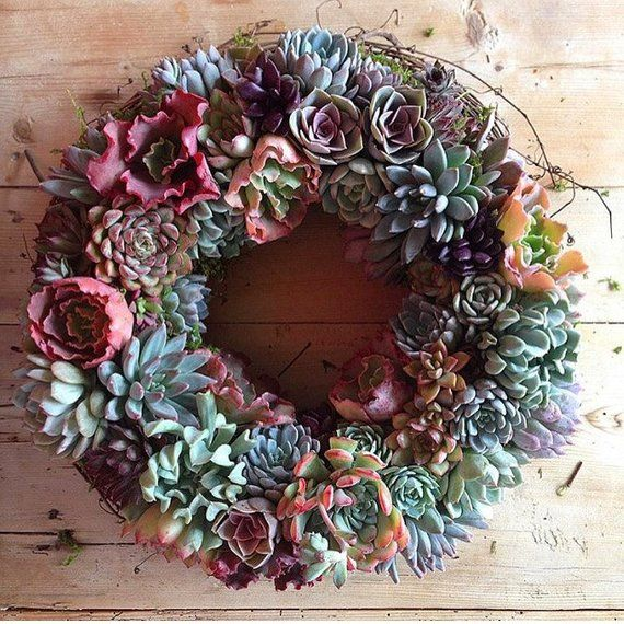 Non Christmas Winter Wreaths.Succulent Wreath