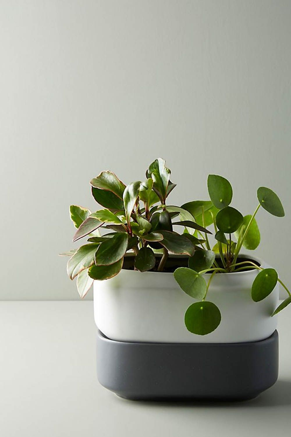 30 Great Housewarming Gifts Good Gift Ideas For New Home