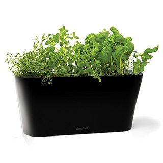 Window Garden Herb Tub