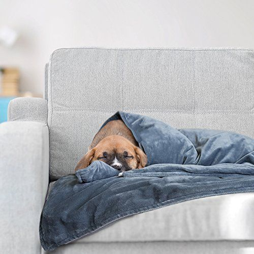Best Weighted Blanket For Dogs On Amazon