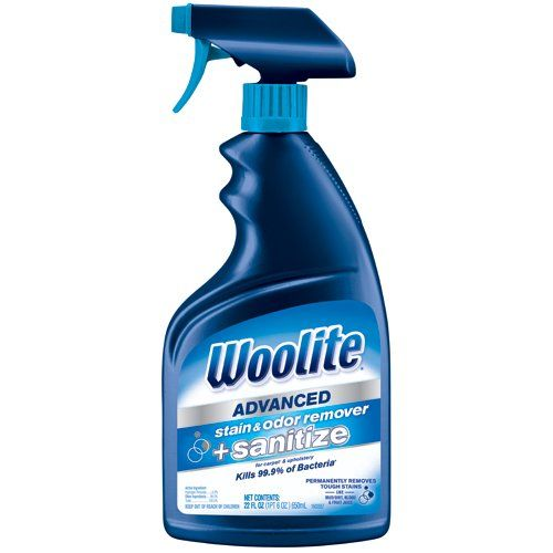 Best Carpet Stain Removers 2019 6 Carpet Spot Cleaners That Work Fast