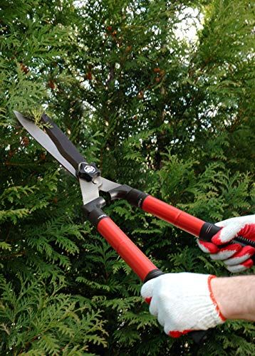 20 Best Garden Shears Hedge Shears And Clippers To Buy