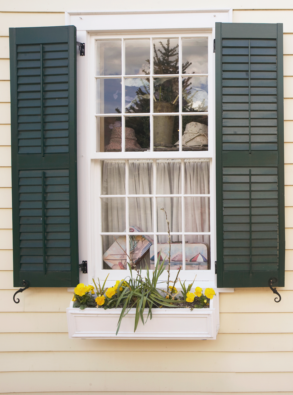 Most Stylish Colonial Shutters