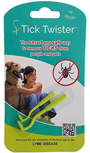 Exactly What to Do When Your Dog Gets a Tick Bite