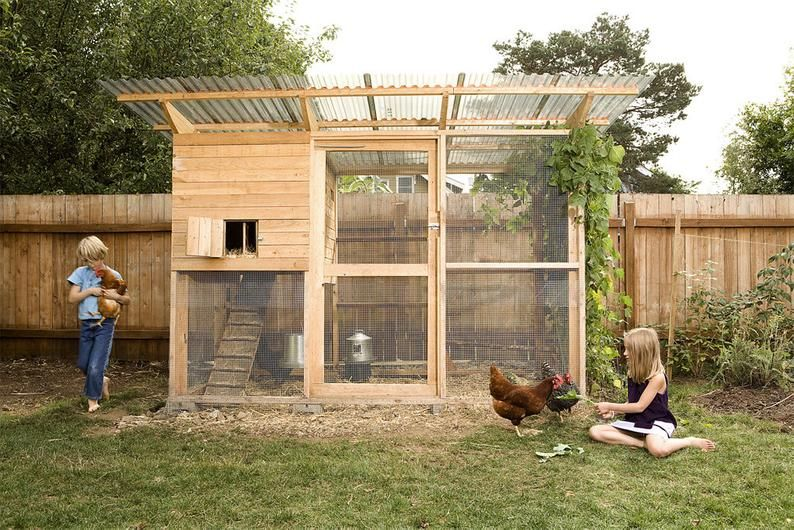 48 Diy Chicken Coops How To Build A Chicken Coop