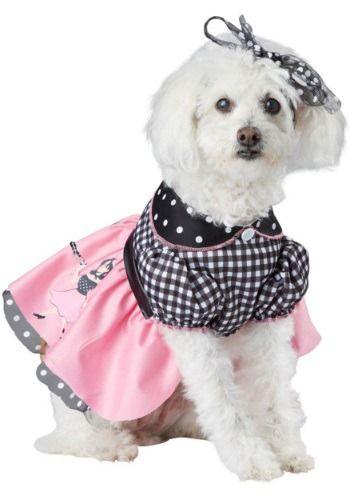 Poodle Skirt Dog Halloween Costume