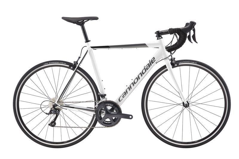 The CAAD Optimo Sora Is a Race-Capable Cheap Road Bike