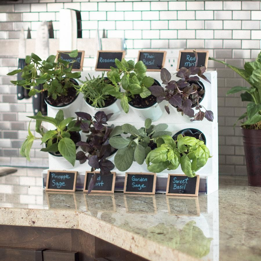 15 Indoor Herb Garden Ideas 2020