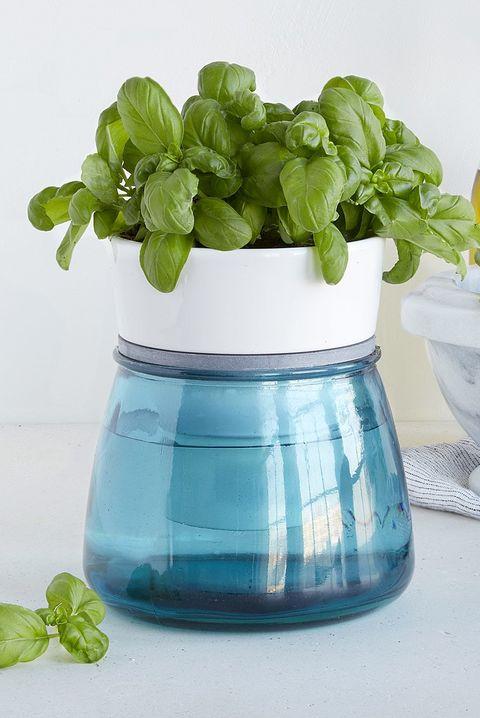 14 Indoor Herb Garden Ideas 2020 - Kitchen Herb Planters We Love