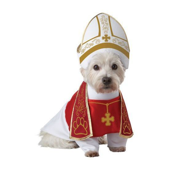 57 Dog Halloween Costumes , Cute Ideas for Pet Costumes
