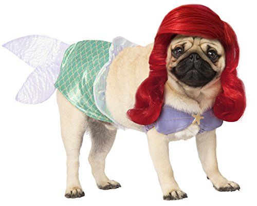 663a5e2b615 14 Funny Dog Halloween Costumes in 2019 - Best Pet Costume Ideas