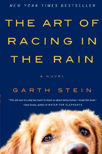 The Art of Racing in the Rain by Garth Stein (August 9)
