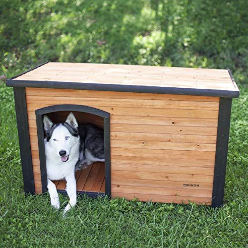 10 Best Insulated Dog Houses 2021 Winter Dog House Reviews