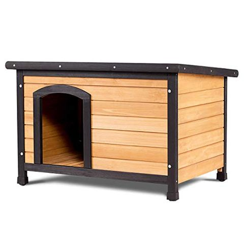 10 Best Insulated Dog Houses 2019 - Winter Dog House Reviews Xlarge Dog House Plans on extra small dog house, xxl dog house, grey dog house, deluxe dog house, custom dog house, wide dog house, carhartt dog house, pink dog house, jumbo dog house, red dog house, medium dog house, normal dog house, mini dog house, giant dog house, yellow dog house, adult dog house, black dog house, xxxl dog house, xl dog house,